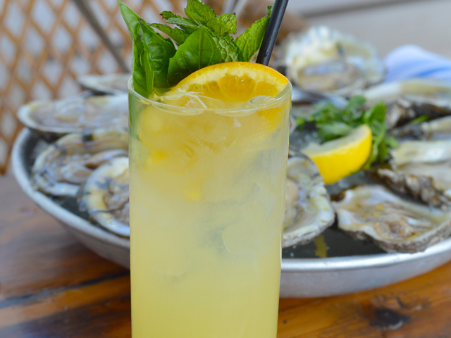 cocktail & oysters
